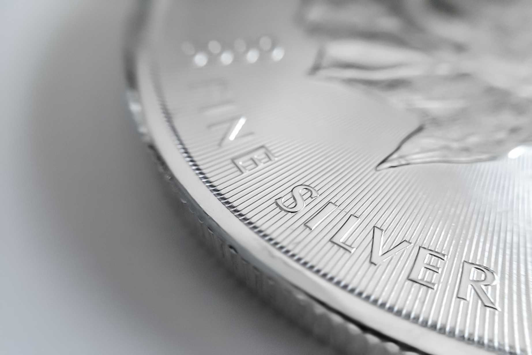 Silver Price Forecast Long Term View