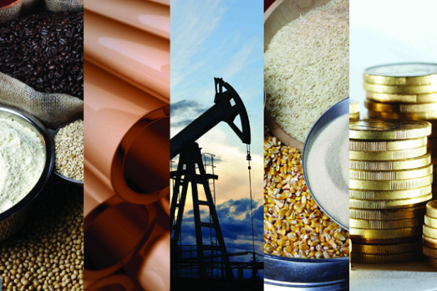 Commodities Daily Forecast
