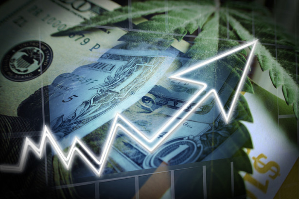 Cannabis Stocks Exploding With Marijuana Leaf On Hundred