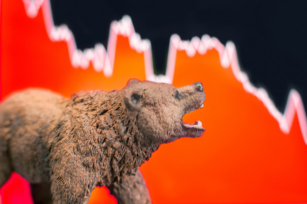 Price crash and bear market