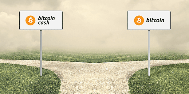 How to Buy Bitcoin Cash