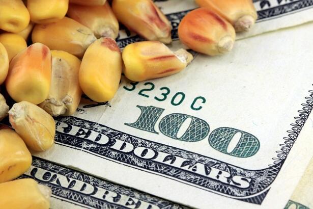corn dollar