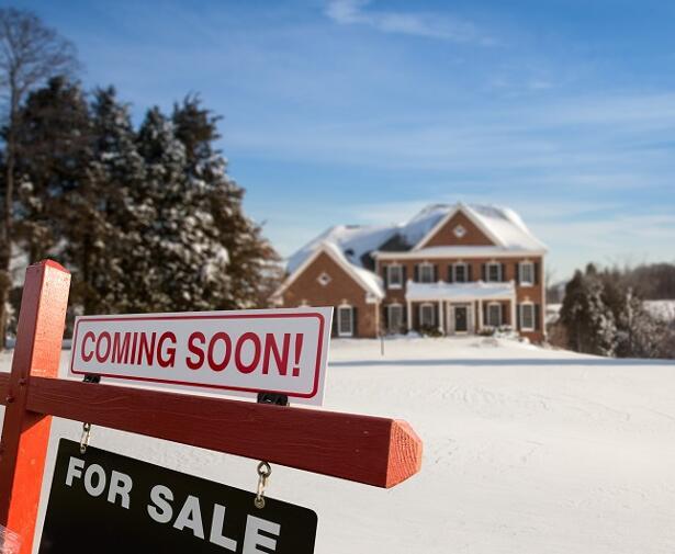 U.S Home Sales