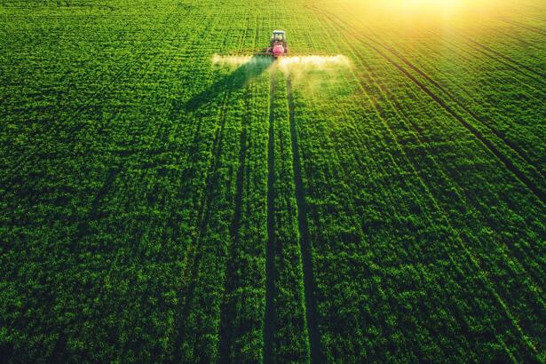 Grains: Corn, Soybean Positive Amid Crop Yield Revisions and Angry Farmers