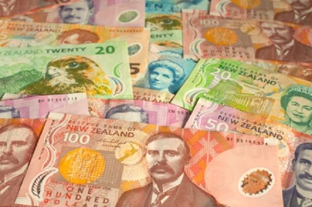 New Zealand Currency Background