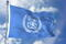 International Maritime Organization IMO Waving Flag