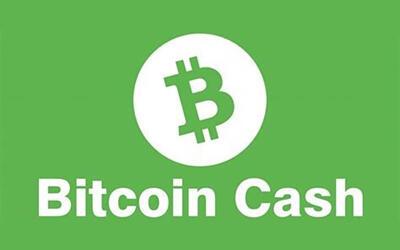 Bitcoin Cash Bch Summary