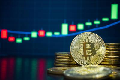 q es bitcoin trader