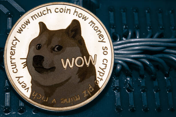 Coin cryptocurrency doge on the background of wires and circuits