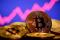 FILE PHOTO: A representation of virtual currency Bitcoin is seen in front of a stock graph in tFILE PHOTO: A representation of virtual currency Bitcoin is seen in front of a stock graph in this illustration takenFILE PHOTO: A representation of virtual currency Bitcoin is seen in front of a stock graph in this illustration takenhis illustration taken