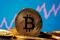 A representation of virtual currency bitcoin is seen
