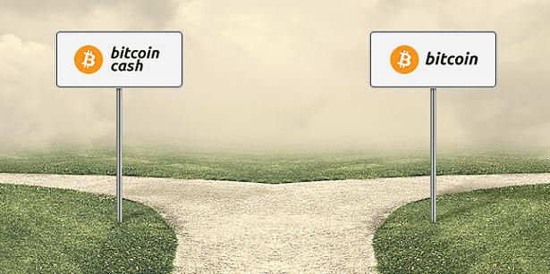 Bitcoin Bitcoin Cash