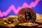 Foto de archivo ilustrativa de una representación de un bitcoin