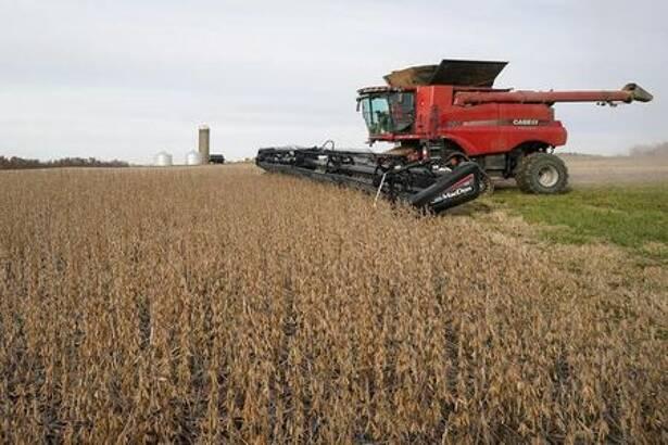 Foto de archivo de la cosecha en un campo de soja en Roachdale, Indiana
