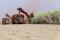 Foto de archivo ilustrativa de una cosecha de caña en un campo en Sao Martinho, en Pradopolis, Brasil