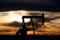 petrolio Greggio